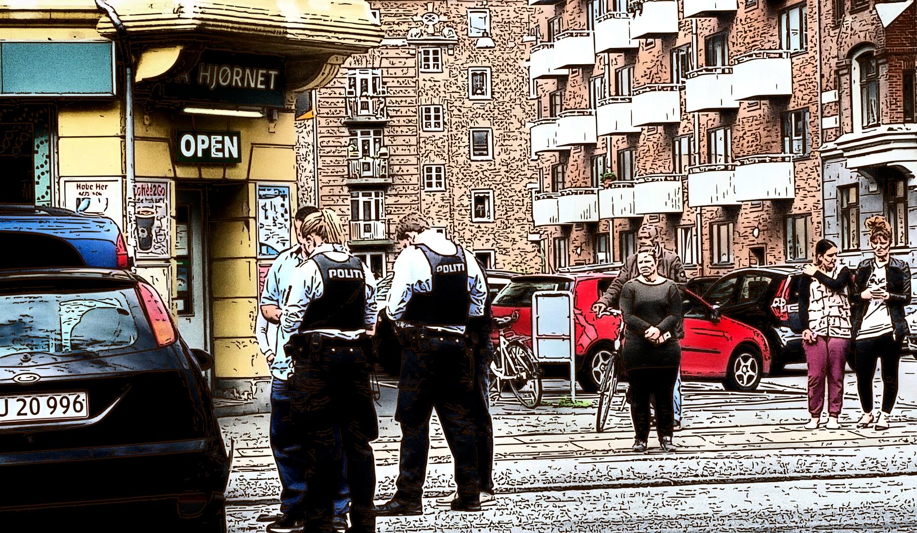 Police in Scandinavia